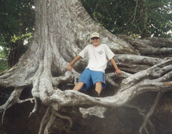 Mike in a tree.